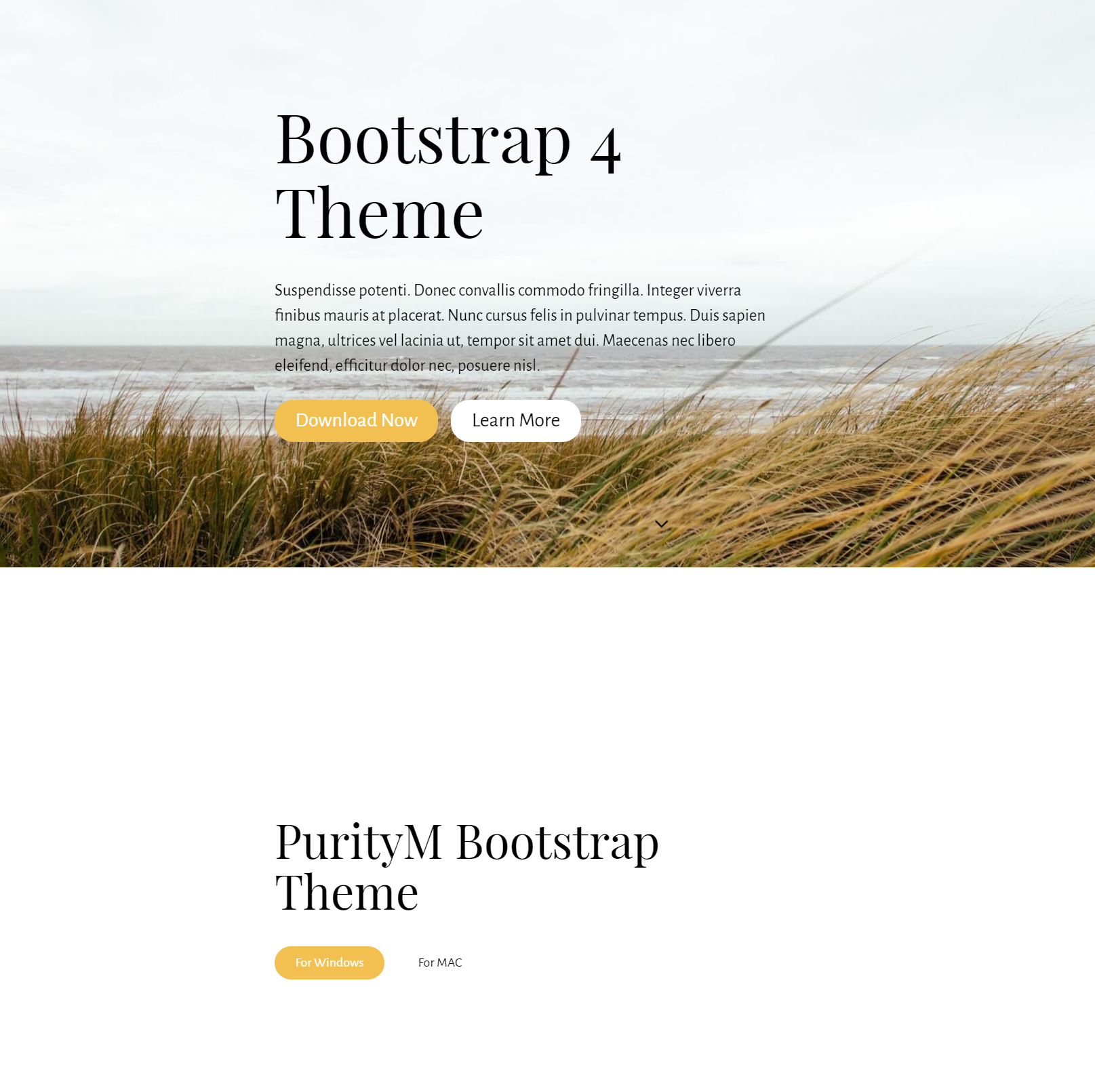 Free Bootstrap 4 Themes