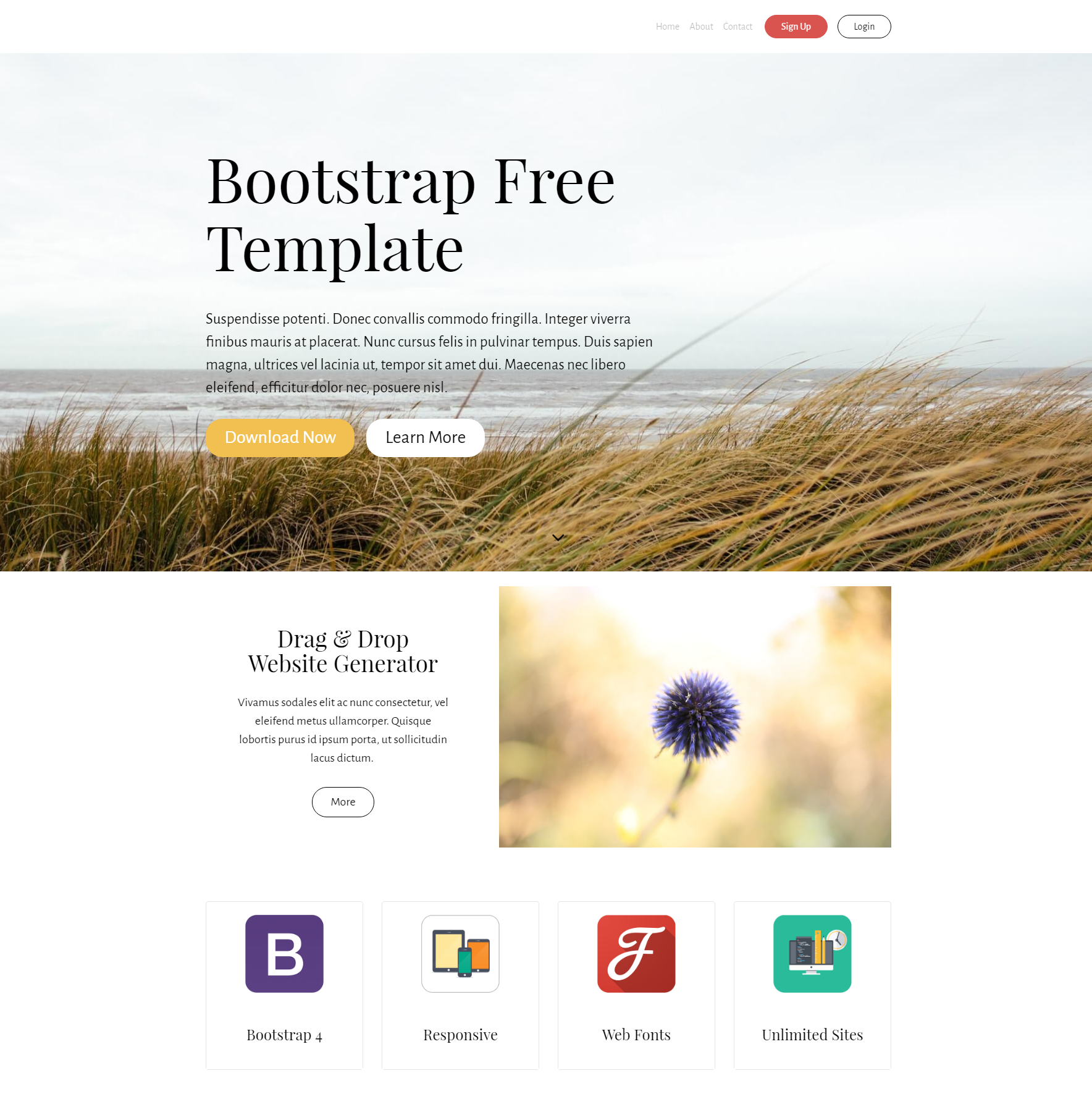 HTML5 Bootstrap Free Themes