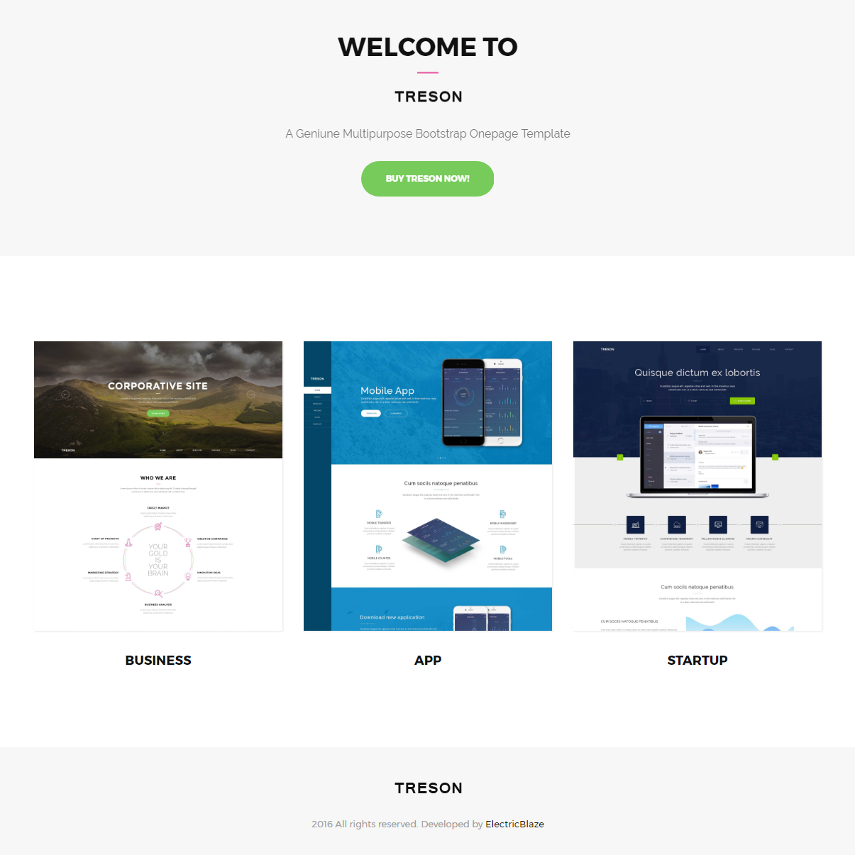 Free Bootstrap Treson Themes