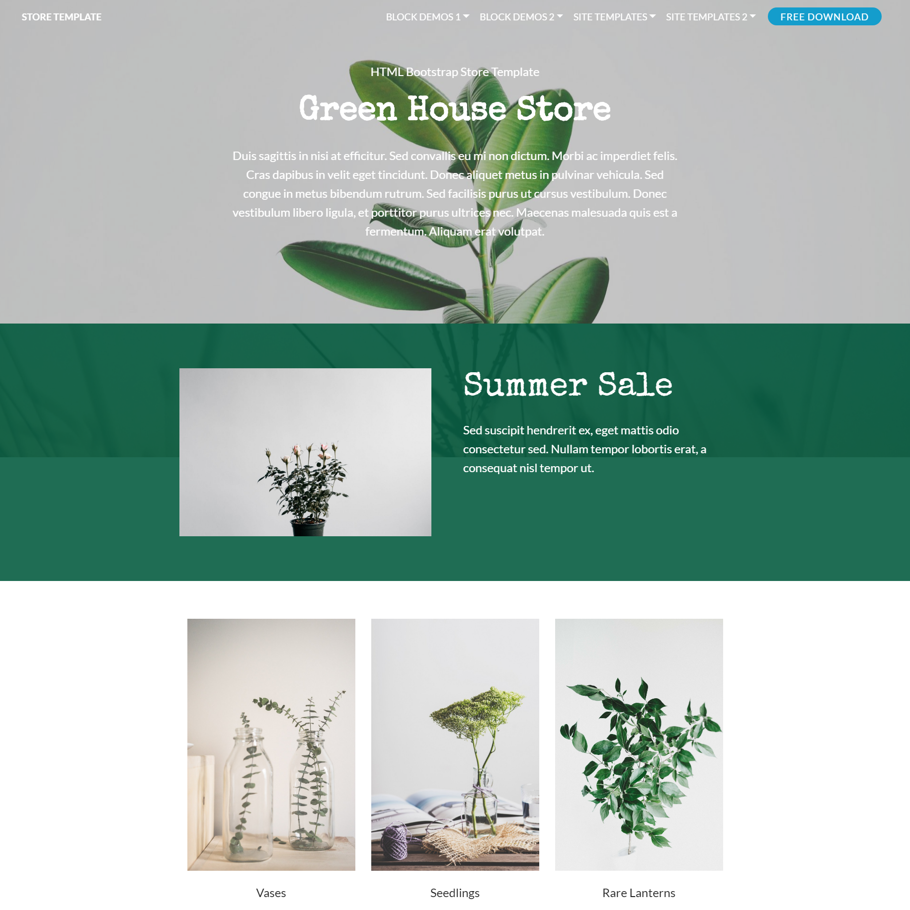 Responsive Bootstrap Store Templates